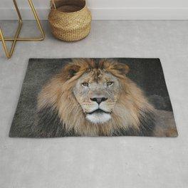 Male Lion Portrait Rug