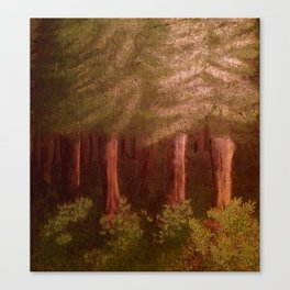 Deep Woods in Summe Canvas Print