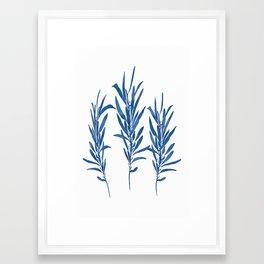 Eucalyptus Branches Blue Framed Art Print