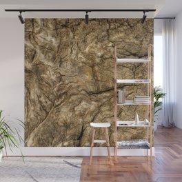 Ancient Timber Wall Mural