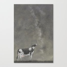 It's our Milky Way little Sophie Canvas Print