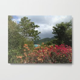 Peter Bay, St. John, US Virgin Islands, Flowers Metal Print