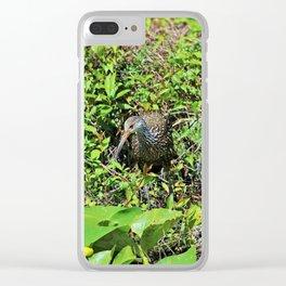 The Limpkin II Clear iPhone Case