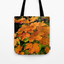 glowing autumn leafs Tote Bag