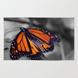 Monarch BW Rug