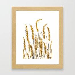 golden wheat field watercolor Framed Art Print
