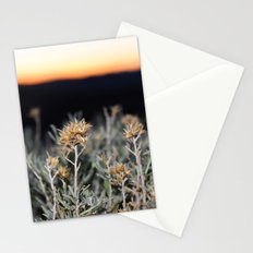 Sagebrush Stationery Cards