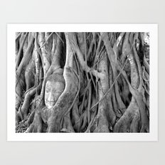 The Lost Buddha  Art Print