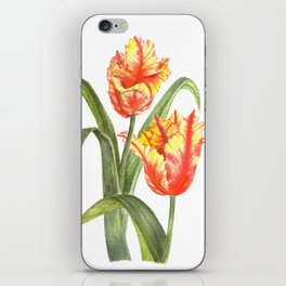 Yellow Parrot Tulips iPhone Skin