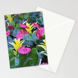 Longwood Gardens Autumn Series 220 Stationery Cards