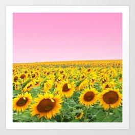Blushing Sunflower Fields Art Print