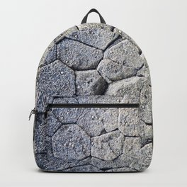 Nature's building blocks Backpack