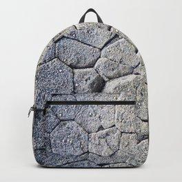 Nature's building blocks Backpack