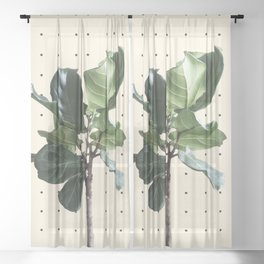 Home Ficus Sheer Curtain