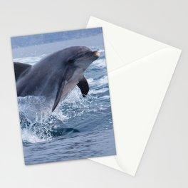 Bottlenose dolphin Stationery Cards