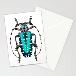 Turquoise Dot Beetle Stationery Cards