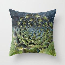 Buegill Spiral Throw Pillow