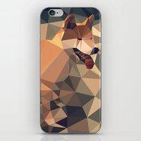 shiba inu iPhone & iPod Skins featuring Triangular shiba inu by Matěj Kašpar Jirásek