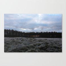 Glimpse Canvas Print