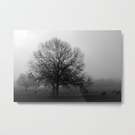 Field of Trees in Black and White Metal Print
