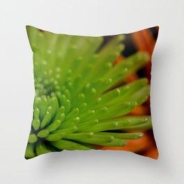 Contrasting Throw Pillow