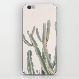 Sunrise Cactus iPhone Skin