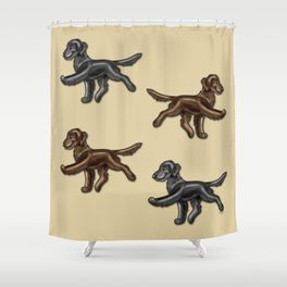 Flat Coated Retrievers Black and Liver Shower Curtain