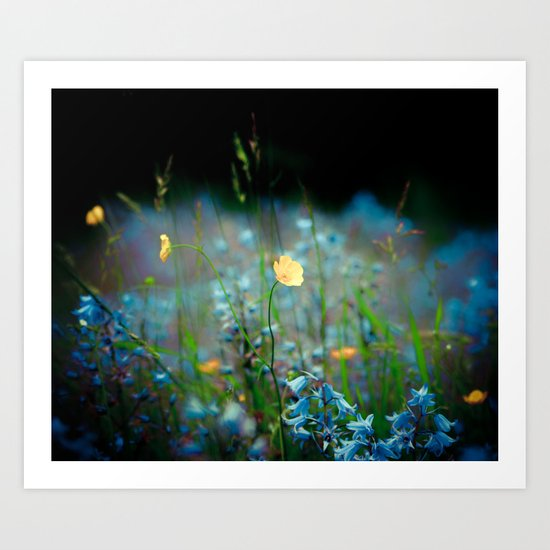Wildflowers Art Print