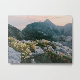 Mountain flowers at sunrise Metal Print