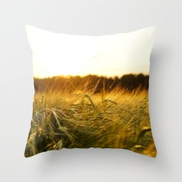 Barley Baby Throw Pillow