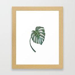 Monstera The One Framed Art Print