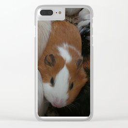 Guinea pig petting zoo closes at three Clear iPhone Case