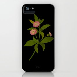 Lantana Trifolia Mary Delany Vintage Paper Flower Collage Floral Botanical Art iPhone Case