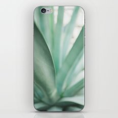 California Vibes iPhone & iPod Skin