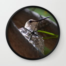 Hummingbird Momma Wall Clock