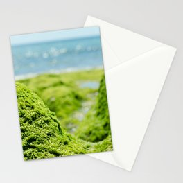 Moss on the rocks Stationery Cards