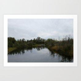 Nature Reflection Art Print