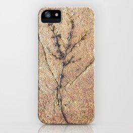 Nature #3 iPhone Case