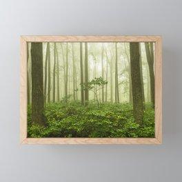 Dreaming of Appalachia - Nature Photography Digital Landscape Framed Mini Art Print
