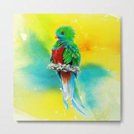 Quetzal - the most beautiful bird Metal Print