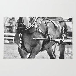 cart horse Rug