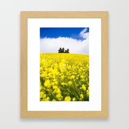 Flower Power in Langhe region Framed Art Print