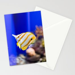 Butterfly fish Stationery Cards