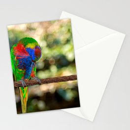 The honey parrot Stationery Cards