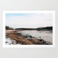 Meadow Art Print
