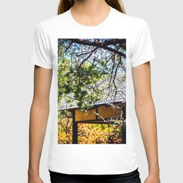 Blooming Sakura Trees In The Japanese Style Garden On A Sunny Spring Day T-shirt