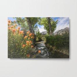 Wild Flower Creek Eastern Sierra  5-18-20 Metal Print