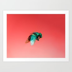 Bugged #06 Art Print
