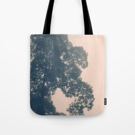 Borneo sunrise in dreamy pastels Tote Bag