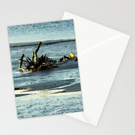 Driftwood In The Marsh Stationery Cards